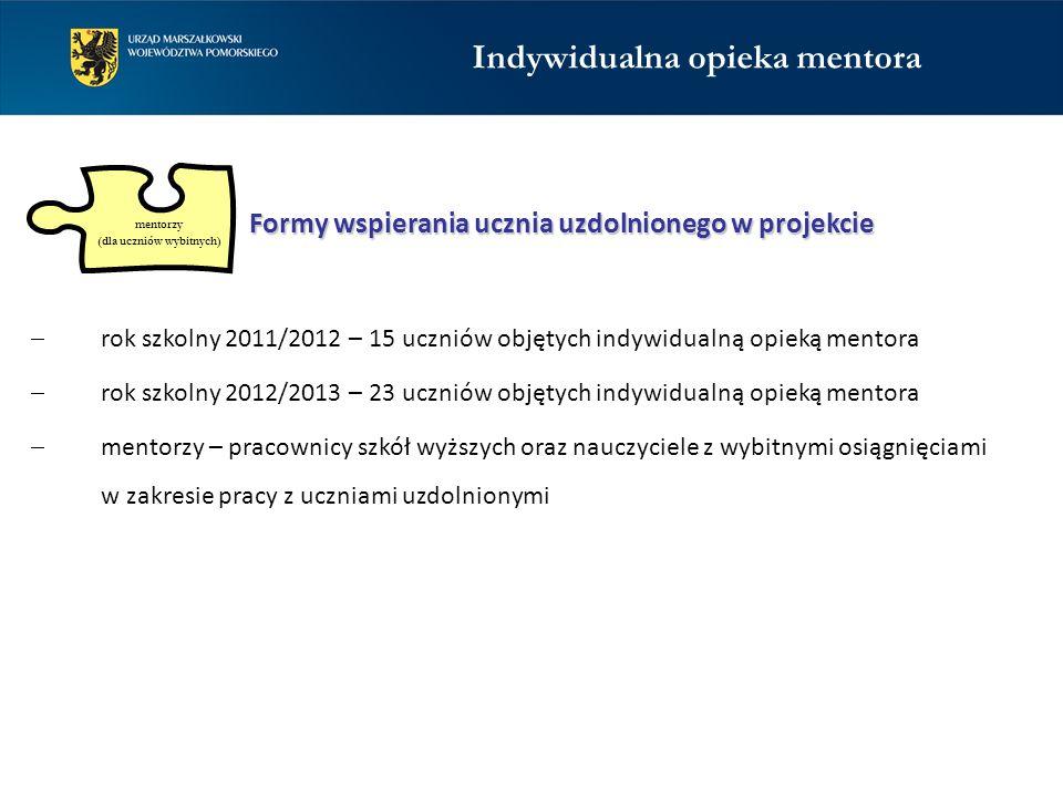 mentorzy (dla uczniów wybitnych)  rok szkolny 2011/2012 – 15 uczniów objętych indywidualną opieką mentora  rok szkolny 2012/2013 – 23 uczniów objęty