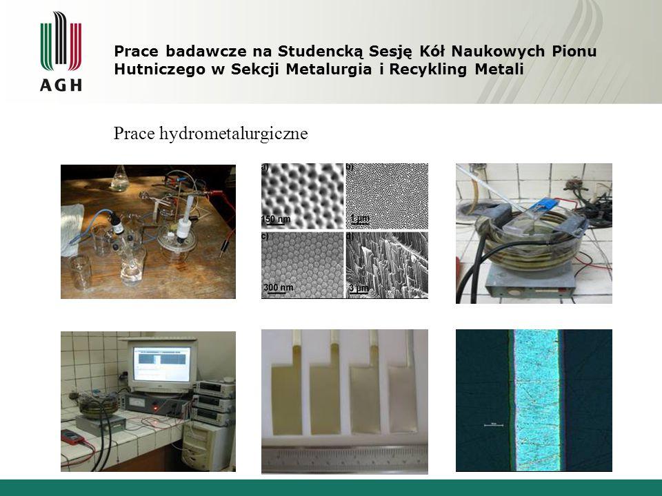 Prace badawcze na Studencką Sesję Kół Naukowych Pionu Hutniczego w Sekcji Metalurgia i Recykling Metali Prace hydrometalurgiczne