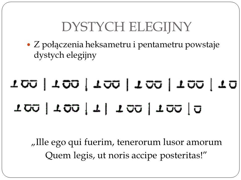 """DYSTYCH ELEGIJNY Z połączenia heksametru i pentametru powstaje dystych elegijny """"Ille ego qui fuerim, tenerorum lusor amorum Quem legis, ut noris acci"""