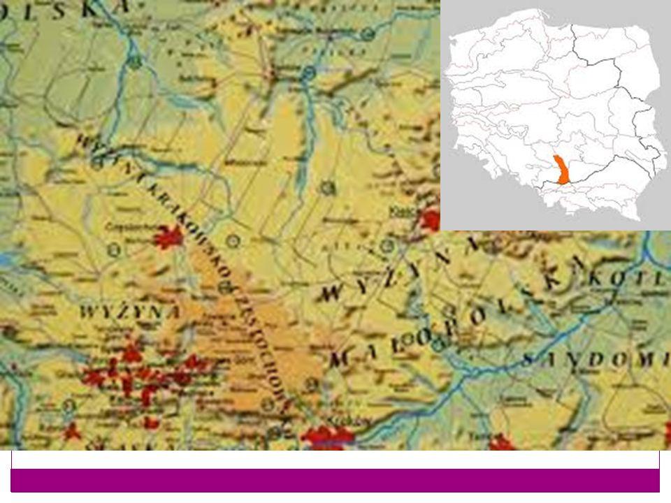 Atrakcje Żarki w miasteczku wyznaczono Szlak Kultury Żydowskiej, na którym znajdują się najciekawsze zachowane zabytki bądź miejsca związane z kulturą żydowską.