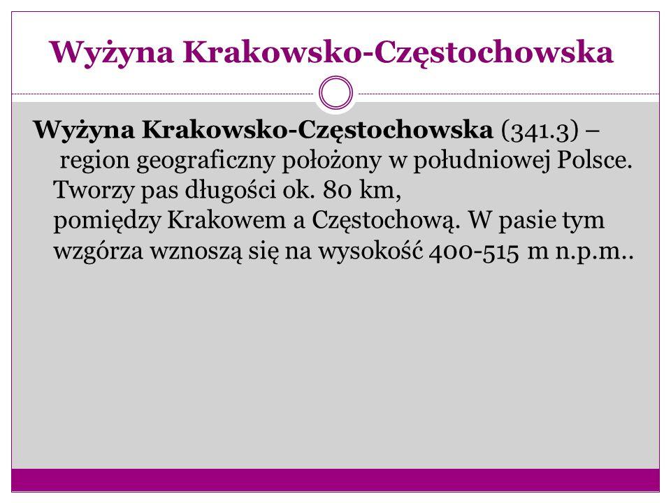 Wyżyna Krakowsko-Częstochowska Wyżyna Krakowsko-Częstochowska (341.3) – region geograficzny położony w południowej Polsce.
