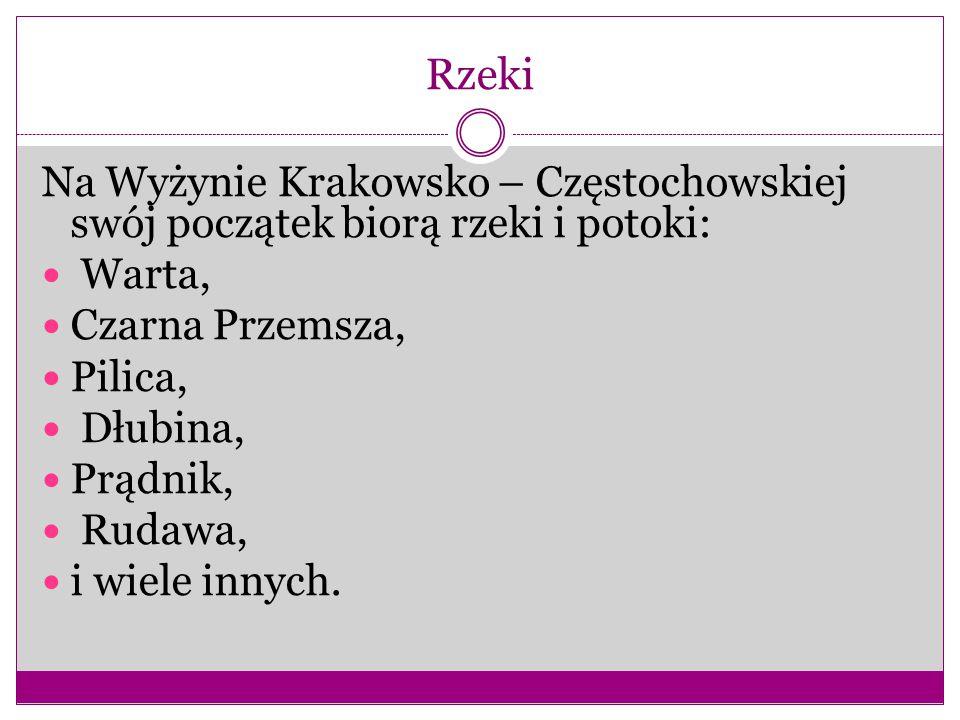 Rzeki Na Wyżynie Krakowsko – Częstochowskiej swój początek biorą rzeki i potoki: Warta, Czarna Przemsza, Pilica, Dłubina, Prądnik, Rudawa, i wiele innych.