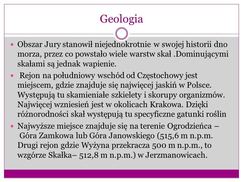 Geologia Obszar Jury stanowił niejednokrotnie w swojej historii dno morza, przez co powstało wiele warstw skał.Dominującymi skałami są jednak wapienie.