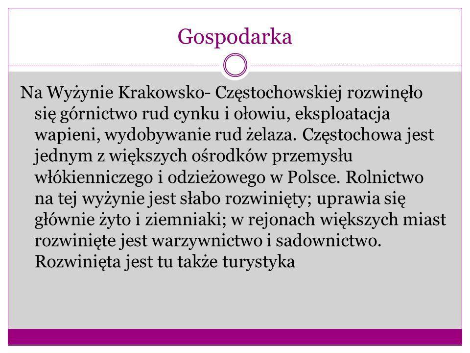 Gospodarka Na Wyżynie Krakowsko- Częstochowskiej rozwinęło się górnictwo rud cynku i ołowiu, eksploatacja wapieni, wydobywanie rud żelaza.