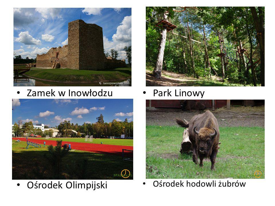 Zamek w Inowłodzu Ośrodek Olimpijski Park Linowy Ośrodek hodowli żubrów