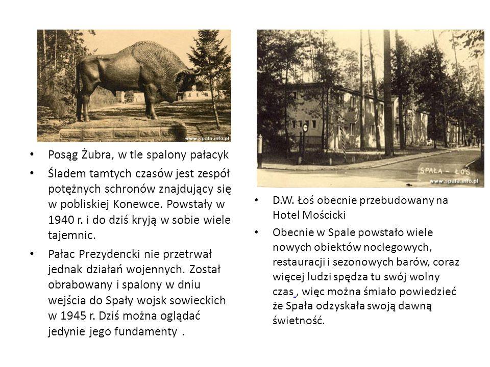 Posąg Żubra, w tle spalony pałacyk Śladem tamtych czasów jest zespół potężnych schronów znajdujący się w pobliskiej Konewce. Powstały w 1940 r. i do d