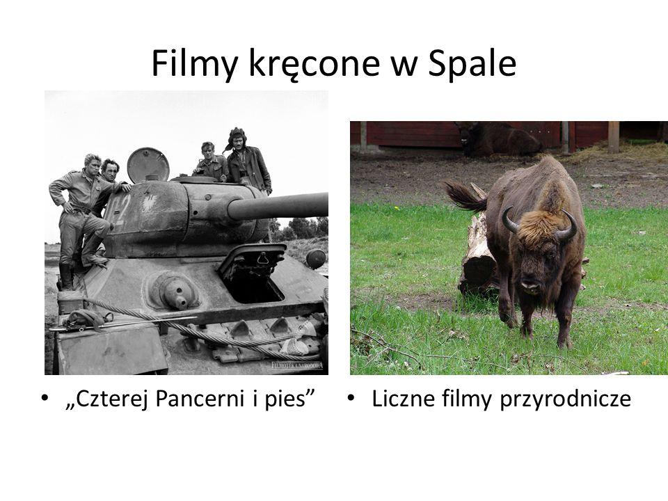 """Filmy kręcone w Spale """"Czterej Pancerni i pies"""" Liczne filmy przyrodnicze"""
