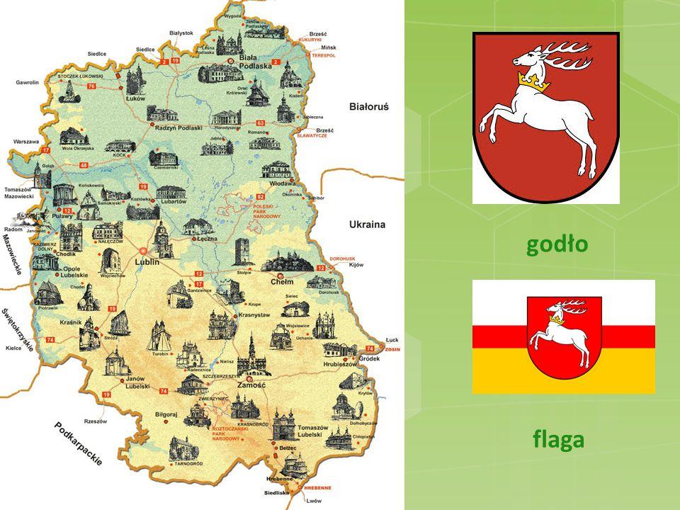 Historia Historia województwa Lubelskiego sięga X wieku.
