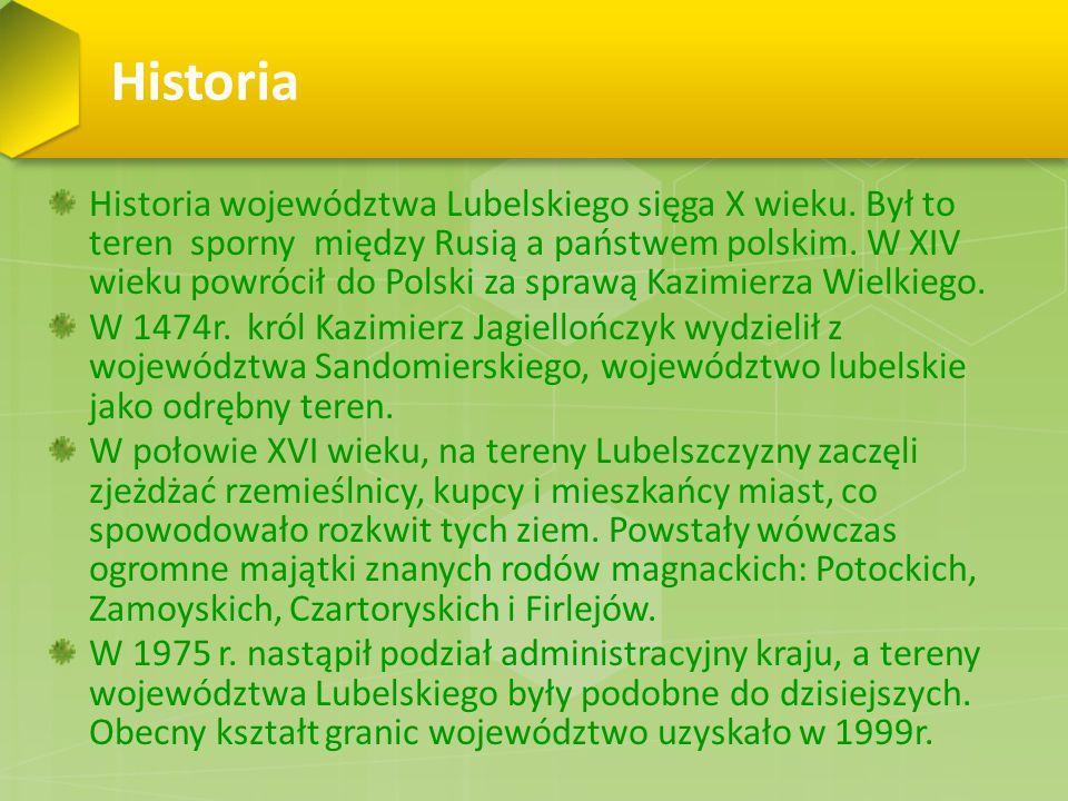 Janowiec Naprzeciw Kazimierza, na lewym brzegu Wisły leży Janowiec.