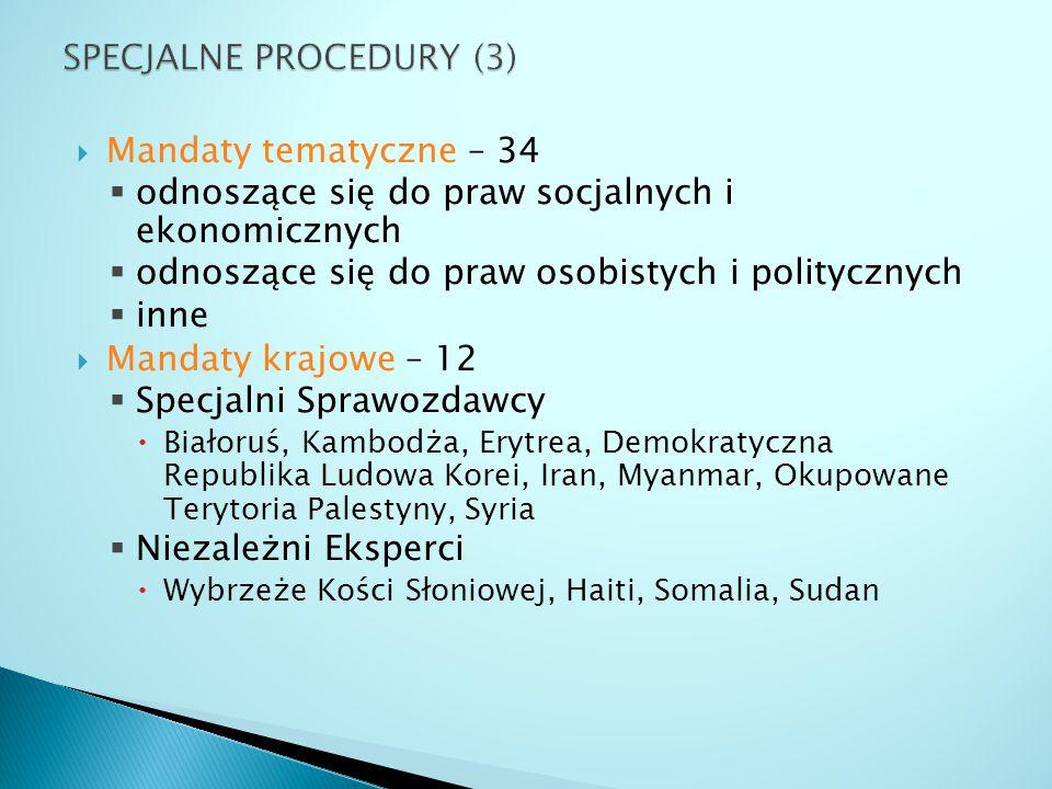  Mandaty tematyczne – 34  odnoszące się do praw socjalnych i ekonomicznych  odnoszące się do praw osobistych i politycznych  inne  Mandaty krajow
