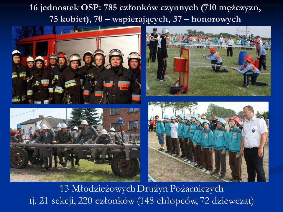 16 jednostek OSP: 785 członków czynnych (710 mężczyzn, 75 kobiet), 70 – wspierających, 37 – honorowych 13 Młodzieżowych Drużyn Pożarniczych tj. 21 sek
