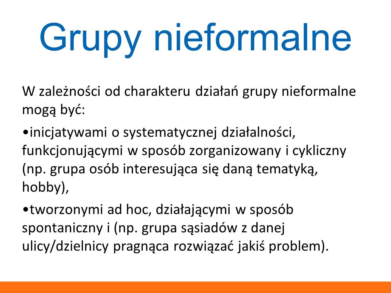 W zależności od charakteru działań grupy nieformalne mogą być: inicjatywami o systematycznej działalności, funkcjonującymi w sposób zorganizowany i cy
