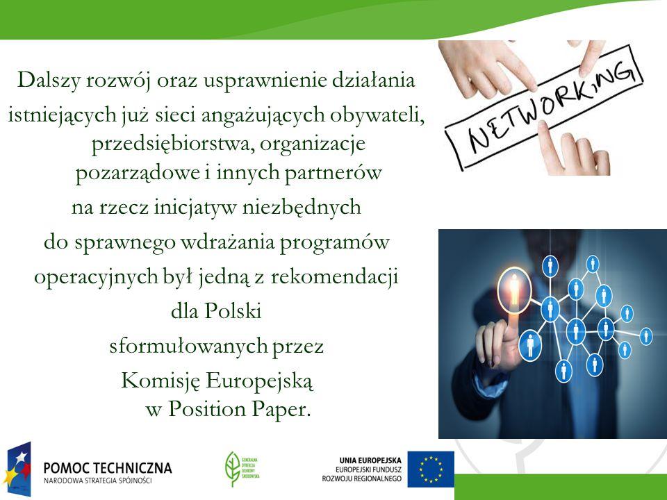 Dalszy rozwój oraz usprawnienie działania istniejących już sieci angażujących obywateli, przedsiębiorstwa, organizacje pozarządowe i innych partnerów na rzecz inicjatyw niezbędnych do sprawnego wdrażania programów operacyjnych był jedną z rekomendacji dla Polski sformułowanych przez Komisję Europejską w Position Paper.