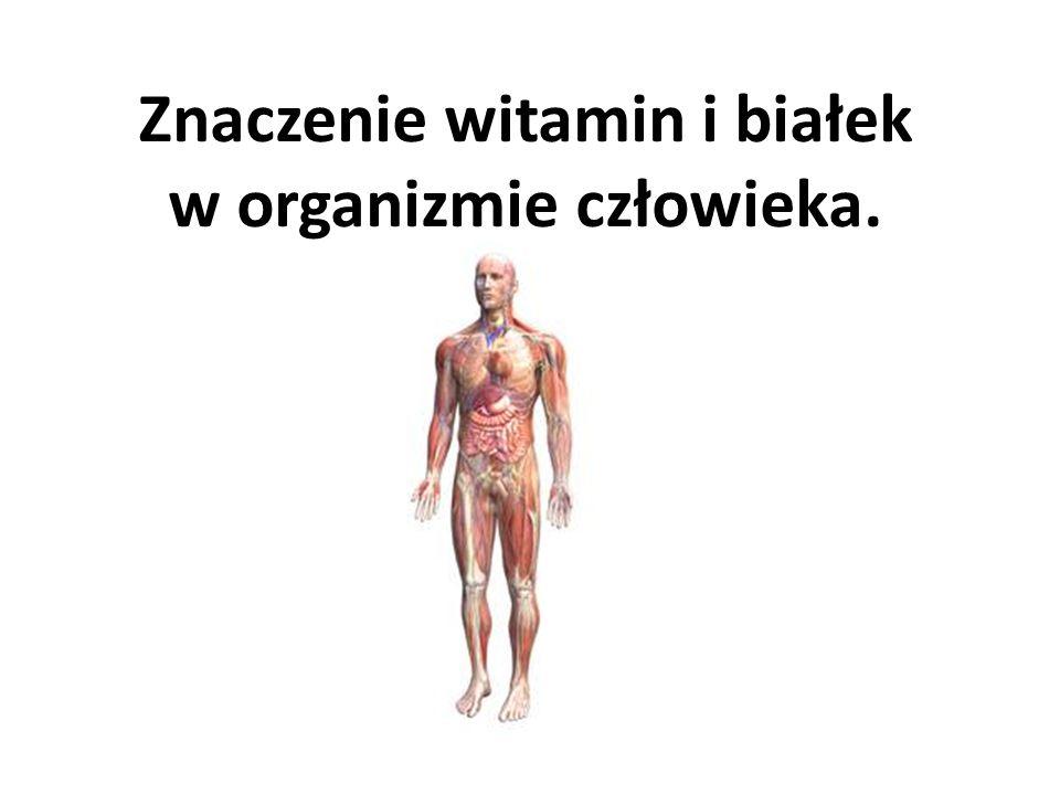 Znaczenie witamin i białek w organizmie człowieka.
