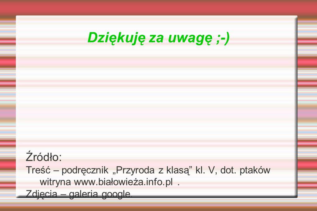"""Dziękuję za uwagę ;-) Źródło: Treść – podręcznik """"Przyroda z klasą"""" kl. V, dot. ptaków witryna www.białowieża.info.pl. Zdjęcia – galeria google."""