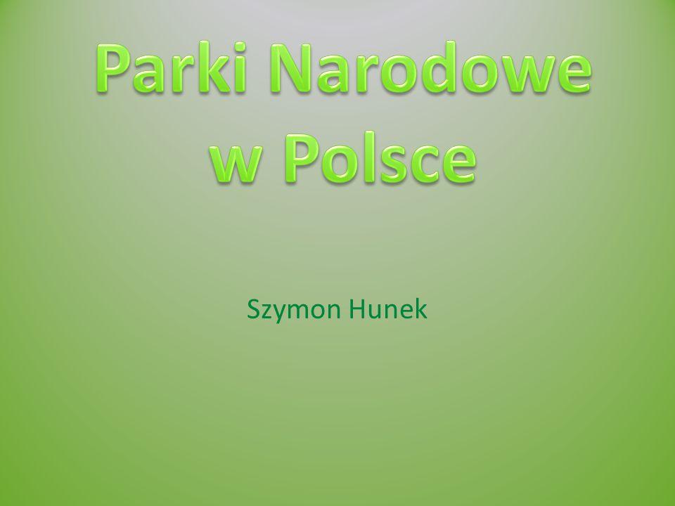 BIEBRZAŃSKI PARK NARODOWY Położony jest w północno-wschodniej Polsce w woj.