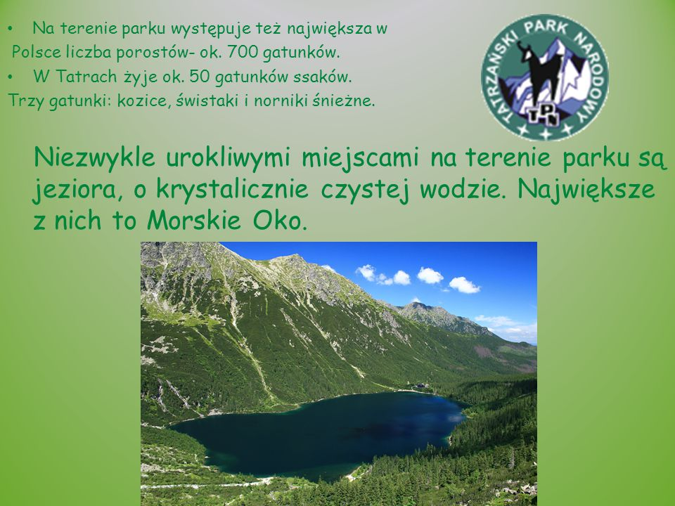 Na terenie parku występuje też największa w Polsce liczba porostów- ok. 700 gatunków. W Tatrach żyje ok. 50 gatunków ssaków. Trzy gatunki: kozice, świ