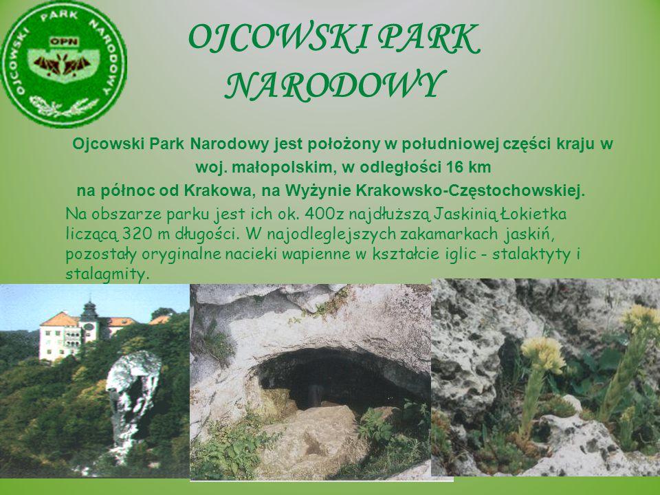 OJCOWSKI PARK NARODOWY Ojcowski Park Narodowy jest położony w południowej części kraju w woj. małopolskim, w odległości 16 km na północ od Krakowa, na