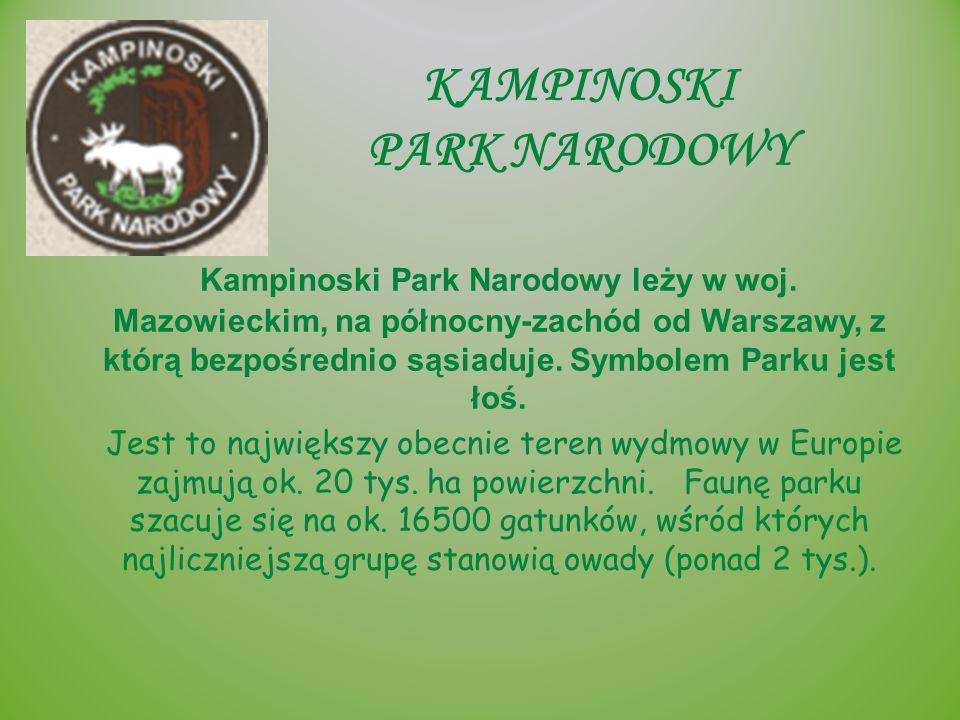 KAMPINOSKI PARK NARODOWY Kampinoski Park Narodowy leży w woj. Mazowieckim, na północny-zachód od Warszawy, z którą bezpośrednio sąsiaduje. Symbolem Pa