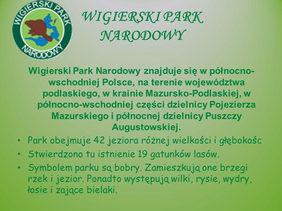 WIGIERSKI PARK NARODOWY Wigierski Park Narodowy znajduje się w północno- wschodniej Polsce, na terenie województwa podlaskiego, w krainie Mazursko-Pod