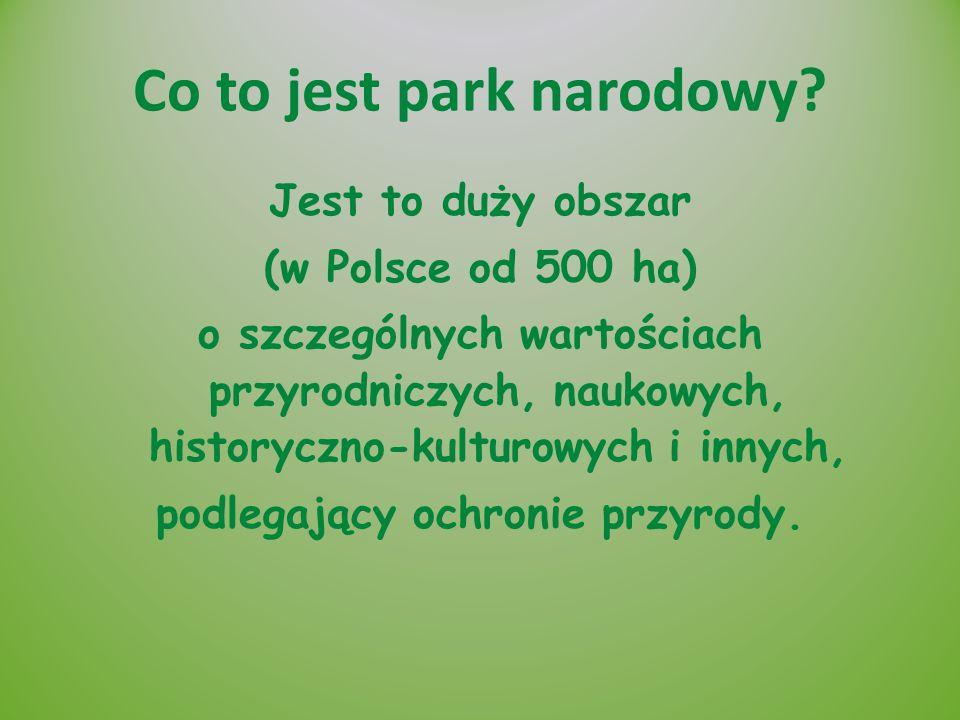 Co to jest park narodowy? Jest to duży obszar (w Polsce od 500 ha) o szczególnych wartościach przyrodniczych, naukowych, historyczno-kulturowych i inn