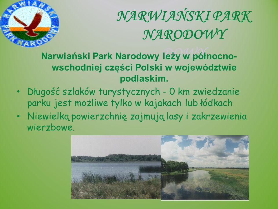 NARWIAŃSKI PARK NARODOWY DOWY Narwiański Park Narodowy leży w północno- wschodniej części Polski w województwie podlaskim. Długość szlaków turystyczny