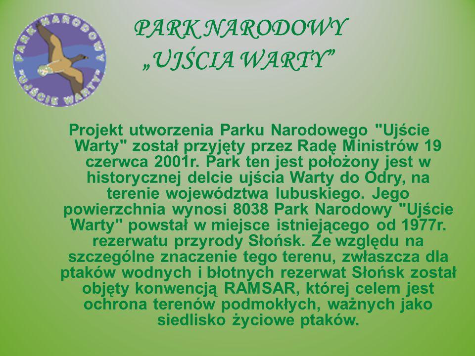 """PARK NARODOWY """"UJŚCIA WARTY"""" Projekt utworzenia Parku Narodowego"""