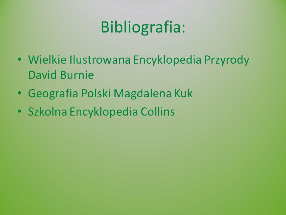 Bibliografia: Wielkie Ilustrowana Encyklopedia Przyrody David Burnie Geografia Polski Magdalena Kuk Szkolna Encyklopedia Collins
