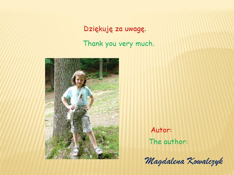 Dziękuję za uwagę. Magdalena Kowalczyk Autor: Thank you very much. The author: