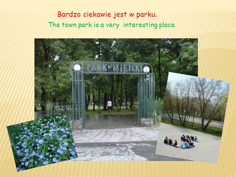 Bardzo ciekawie jest w parku. The town park is a very interesting place.
