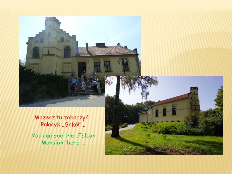 """Możesz tu zobaczyć Pałacyk """"Sokół""""… You can see the """"Falcon Mansion"""" here..."""