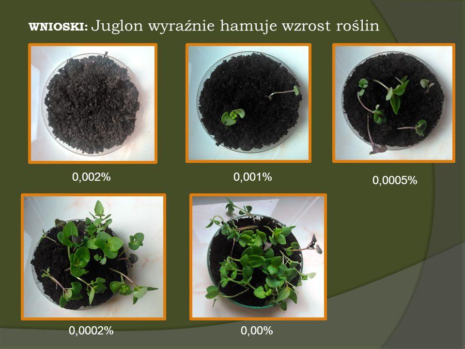 WNIOSKI: Juglon wyraźnie hamuje wzrost roślin 0,002%0,001% 0,0005% 0,0002%0,00%