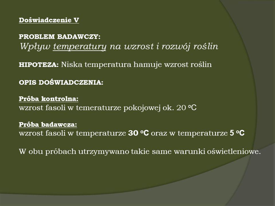 Doświadczenie V PROBLEM BADAWCZY: Wpływ temperatury na wzrost i rozwój roślin HIPOTEZA: Niska temperatura hamuje wzrost roślin OPIS DOŚWIADCZENIA: Pró