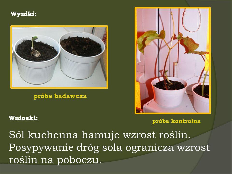 Wyniki: próba badawcza próba kontrolna Wnioski: Sól kuchenna hamuje wzrost roślin. Posypywanie dróg solą ogranicza wzrost roślin na poboczu.