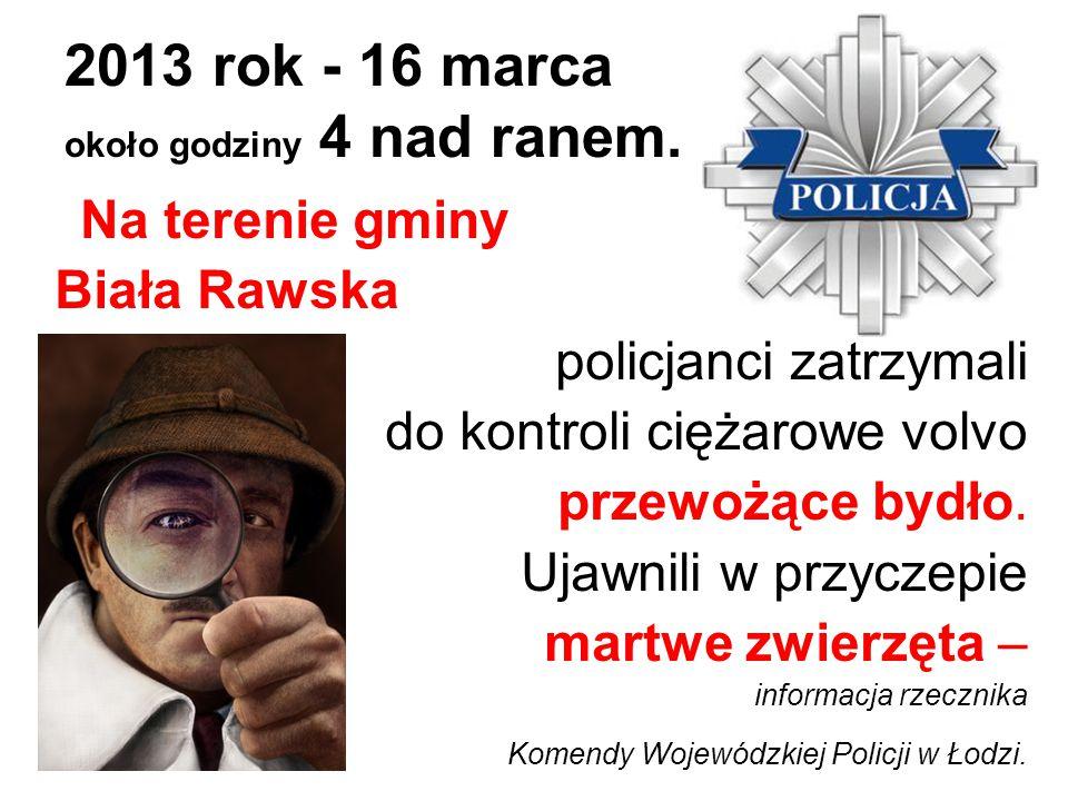 2013 rok - 16 marca około godziny 4 nad ranem. Na terenie gminy Biała Rawska policjanci zatrzymali do kontroli ciężarowe volvo przewożące bydło. Ujawn