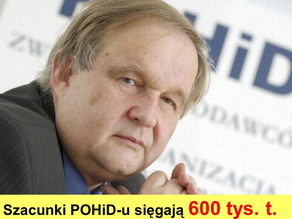 Szacunki POHiD-u sięgają 600 tys. t.