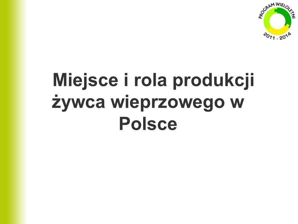 Miejsce i rola produkcji żywca wieprzowego w Polsce