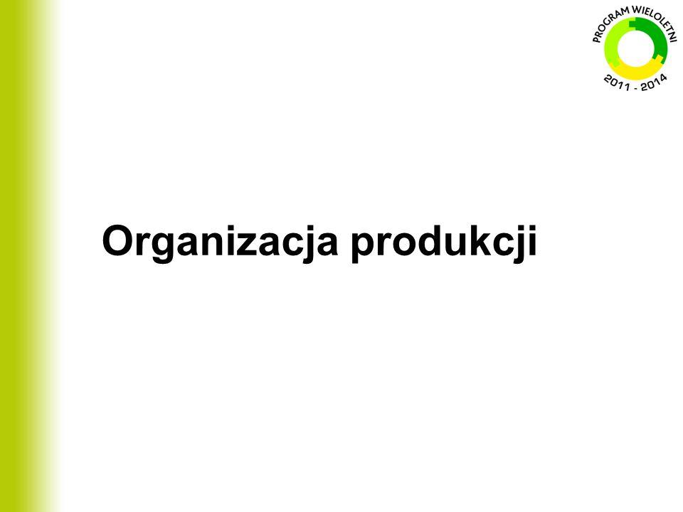 Organizacja produkcji