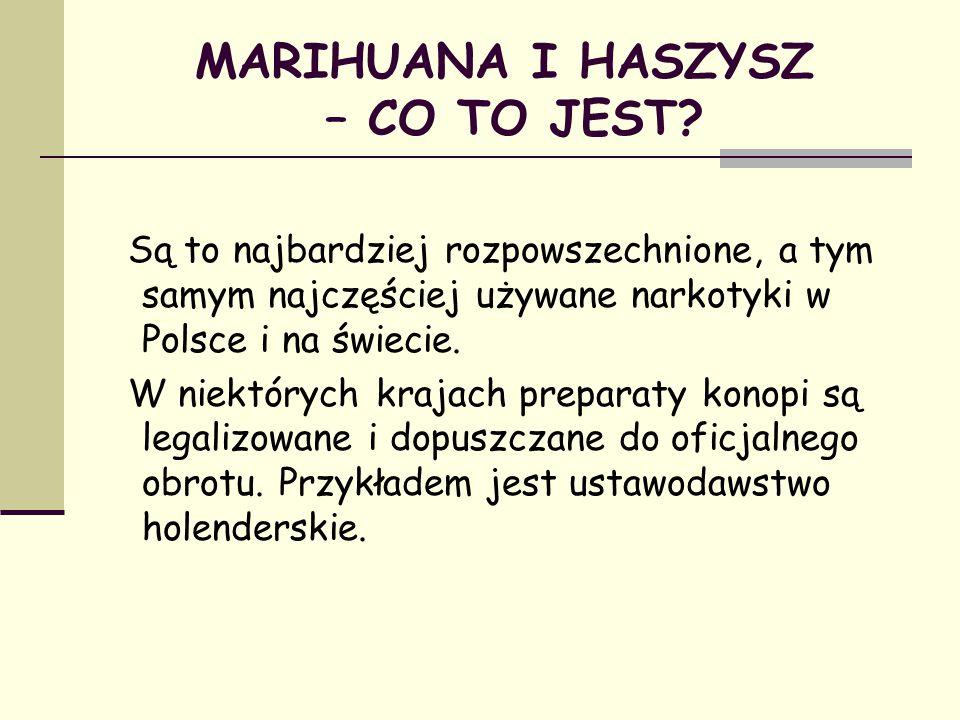 MARIHUANA I HASZYSZ – CO TO JEST? Są to najbardziej rozpowszechnione, a tym samym najczęściej używane narkotyki w Polsce i na świecie. W niektórych kr