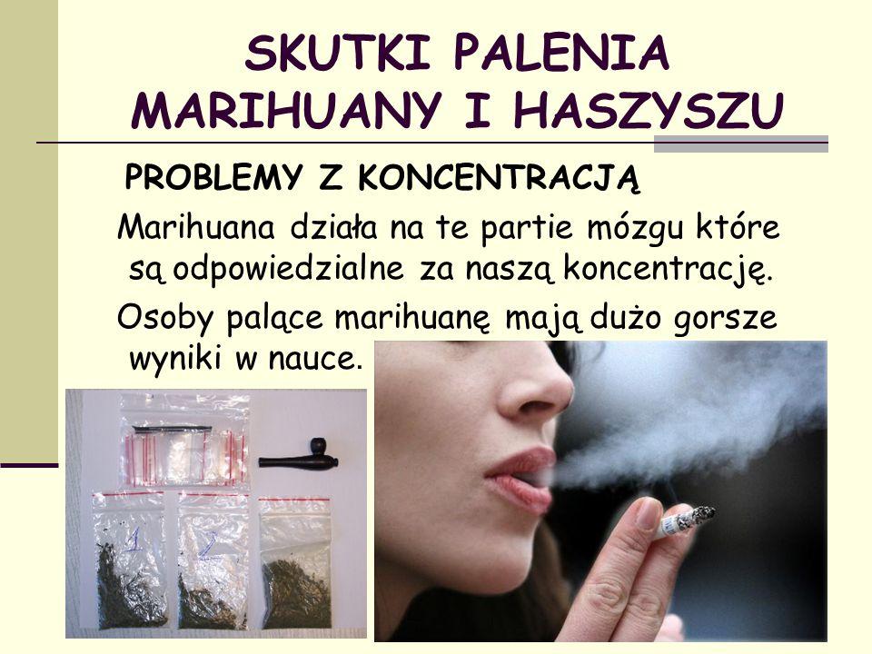 SKUTKI PALENIA MARIHUANY I HASZYSZU PROBLEMY Z KONCENTRACJĄ Marihuana działa na te partie mózgu które są odpowiedzialne za naszą koncentrację. Osoby p