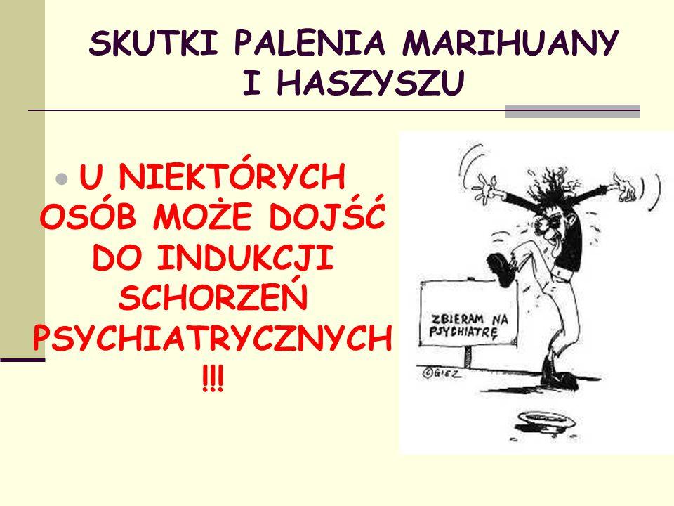 SKUTKI PALENIA MARIHUANY I HASZYSZU  U NIEKTÓRYCH OSÓB MOŻE DOJŚĆ DO INDUKCJI SCHORZEŃ PSYCHIATRYCZNYCH !!!