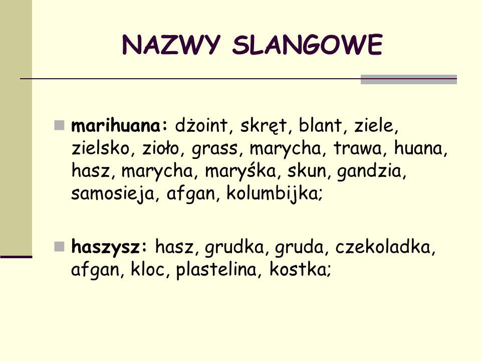 NAZWY SLANGOWE marihuana: dżoint, skręt, blant, ziele, zielsko, zioło, grass, marycha, trawa, huana, hasz, marycha, maryśka, skun, gandzia, samosieja,