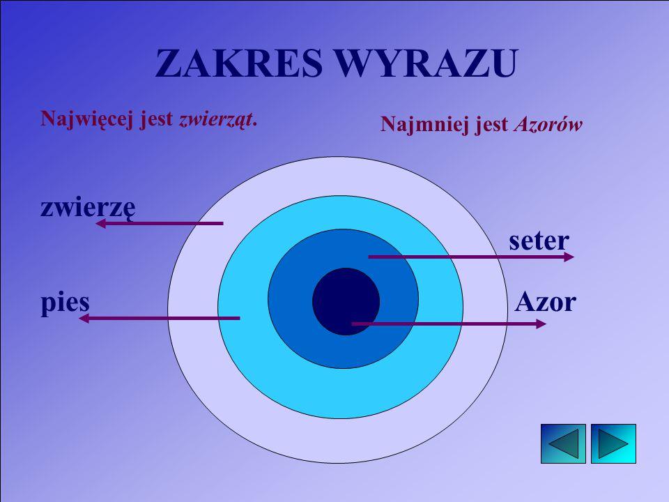 zwierzę pies seter Azor Najwięcej jest zwierząt. Najmniej jest Azorów ZAKRES WYRAZU