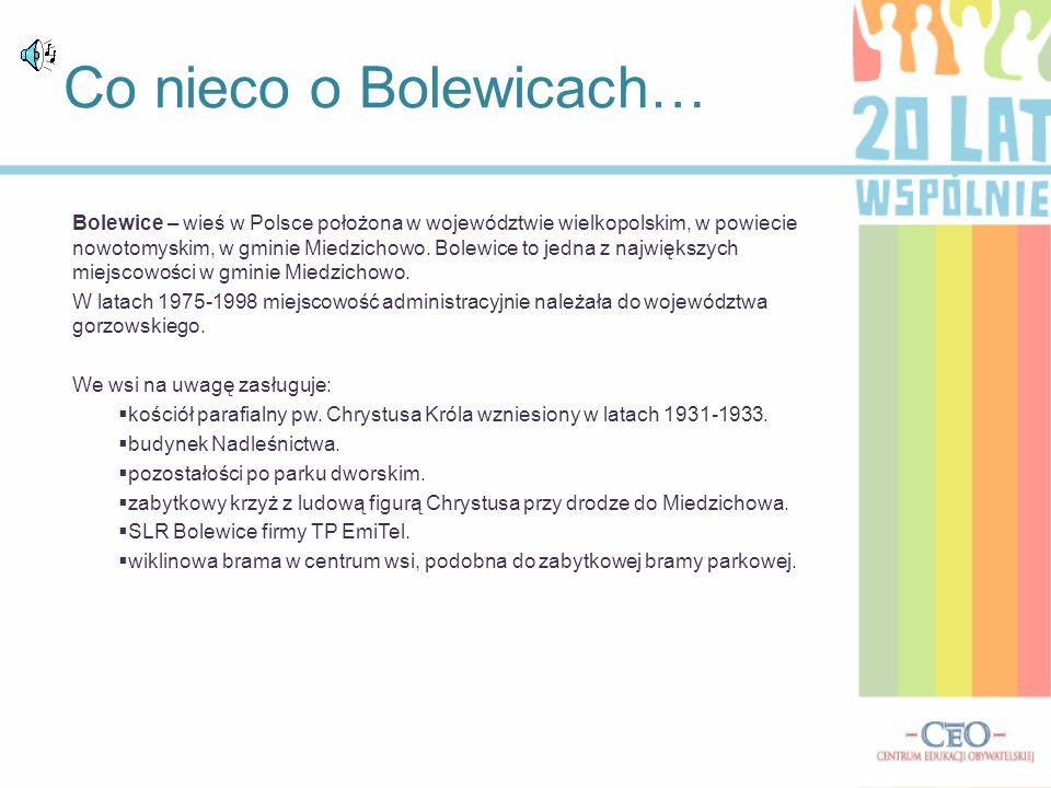 Bolewice – wieś w Polsce położona w województwie wielkopolskim, w powiecie nowotomyskim, w gminie Miedzichowo. Bolewice to jedna z największych miejsc
