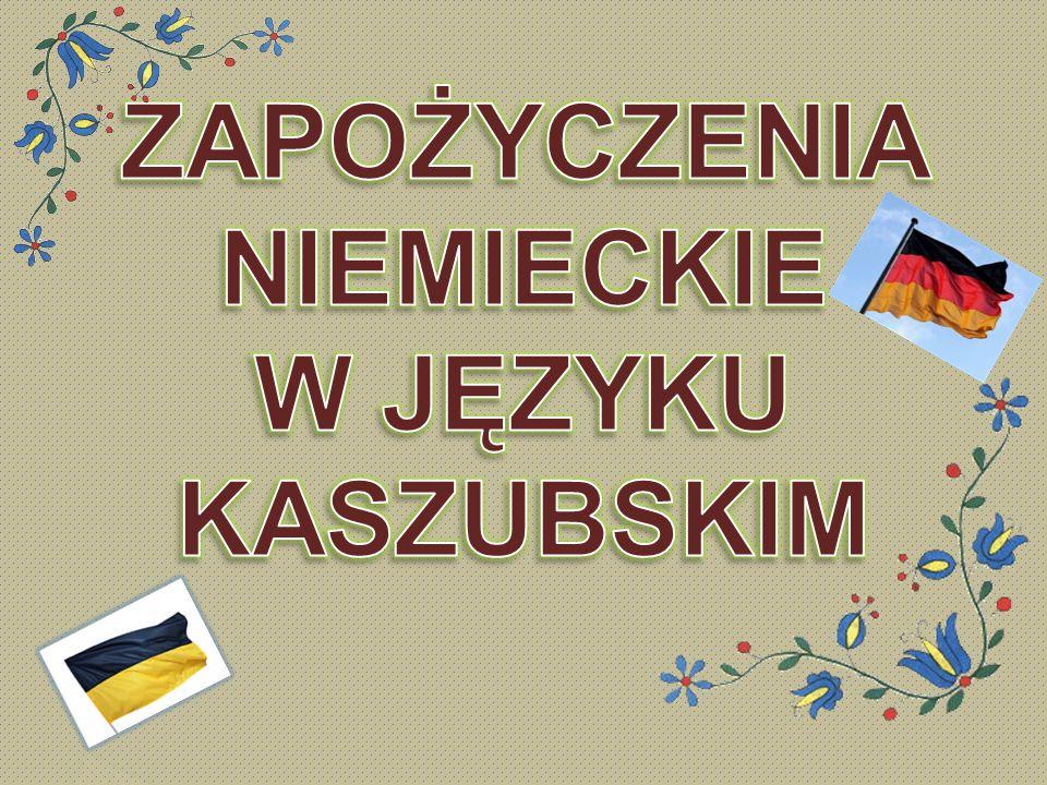 Język Kaszubski Mowa zachodnios ł owia ń ska i lechicka o spornym statusie – w zale ż no ś ci od przyj ę tych kryteriów uznawana za odr ę bny j ę zyk lub dialekt j ę zyka polskiego.