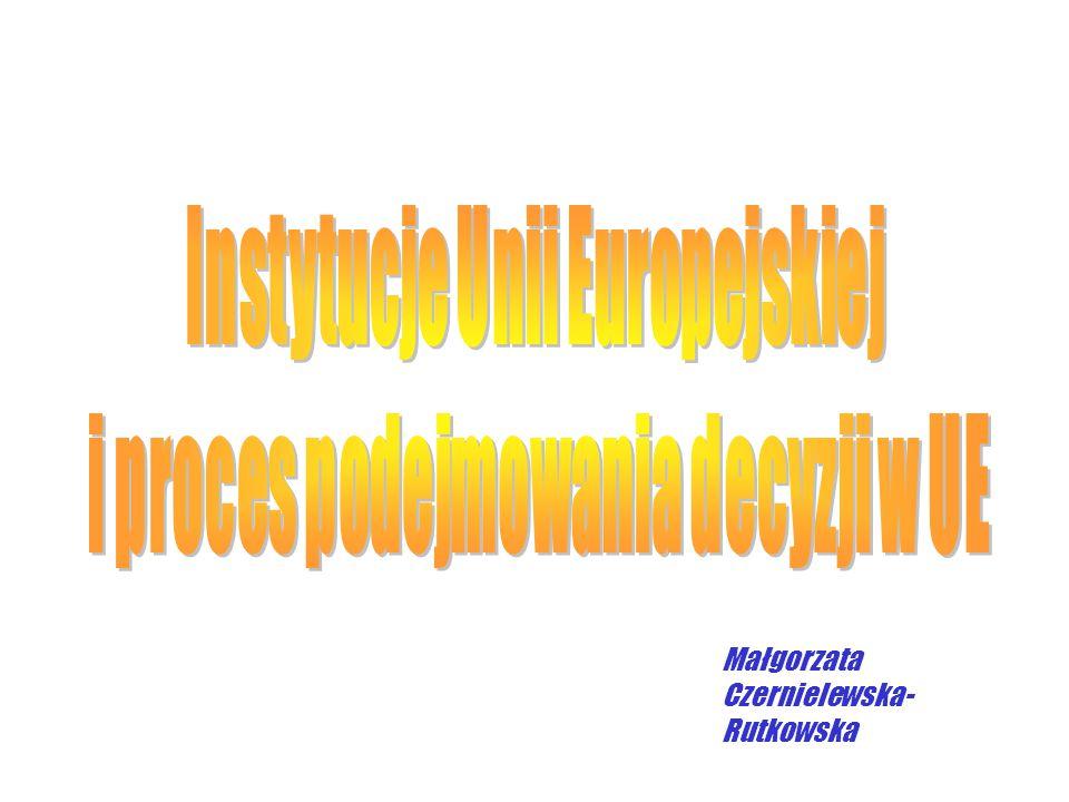 Organy wymiaru sprawiedliwości ETS oraz SPI posiadają cechy właściwe: trybunałowi międzynarodowemu - trybunałowi międzynarodowemu - ETS (rozstrzyganie sporów pomiędzy państwami członkowskimi) trybunałowi konstytucyjnemu - trybunałowi konstytucyjnemu (orzekanie o zgodności aktów prawa pochodnego z prawem pierwotnym) sądowi najwyższemu - sądowi najwyższemu (ze względu na możliwość odwołania się od orzeczeń niższych instancji) sądowi administracyjnemu - sądowi administracyjnemu (rozstrzyganie spraw personalnych oraz zapewnienie ochrony osobom fizycznym i prawnym przed skutkami nielegalnych działań instytucji wspólnotowych)