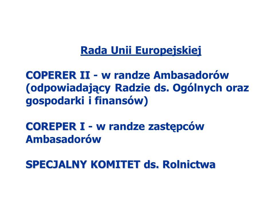 Rada Unii Europejskiej COPERER II COPERER II - w randze Ambasadorów (odpowiadający Radzie ds. Ogólnych oraz gospodarki i finansów) COREPER I COREPER I