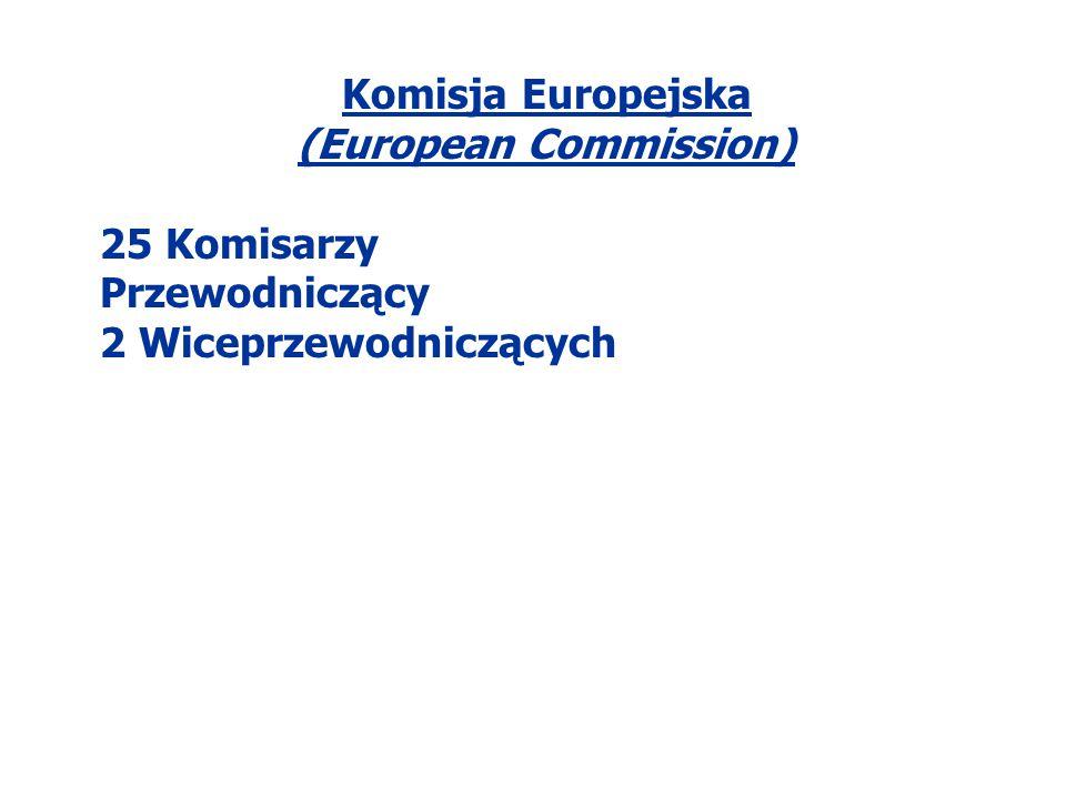 Komisja Europejska (European Commission) 25 Komisarzy Przewodniczący 2 Wiceprzewodniczących