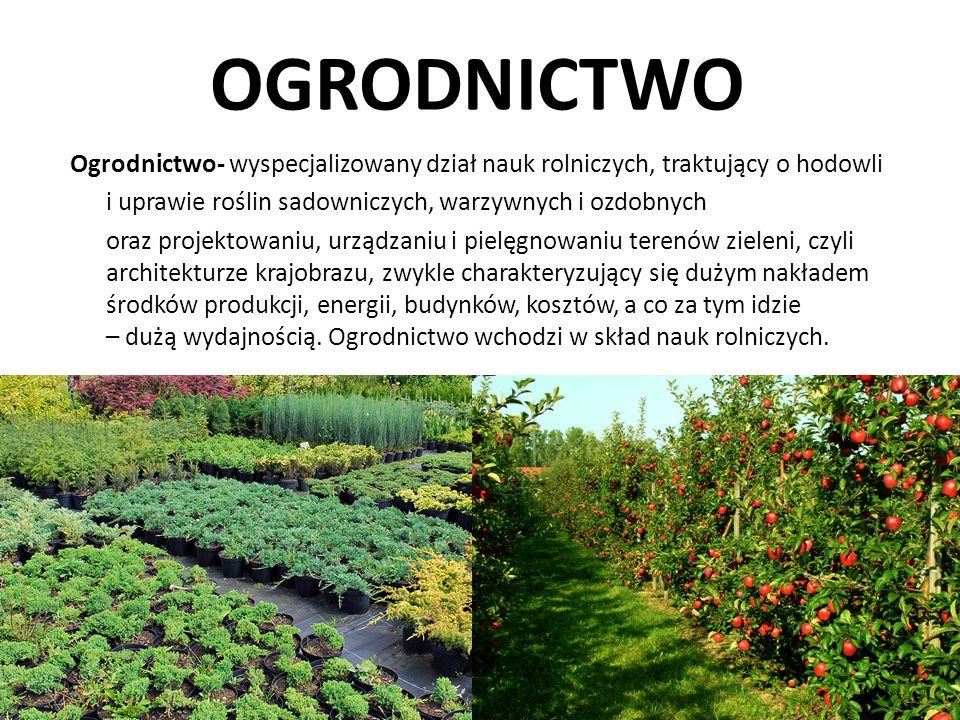 OGRODNICTWO Ogrodnictwo- wyspecjalizowany dział nauk rolniczych, traktujący o hodowli i uprawie roślin sadowniczych, warzywnych i ozdobnych oraz proje
