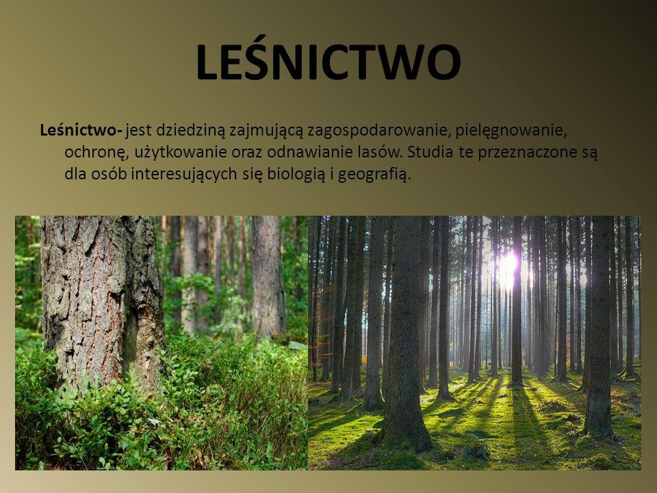 LEŚNICTWO Leśnictwo- jest dziedziną zajmującą zagospodarowanie, pielęgnowanie, ochronę, użytkowanie oraz odnawianie lasów. Studia te przeznaczone są d